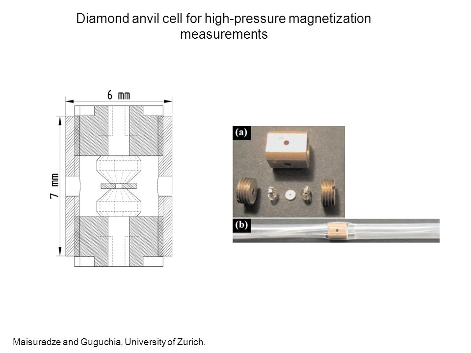 Diamond anvil cell for high-pressure magnetization measurements Maisuradze and Guguchia, University of Zurich.