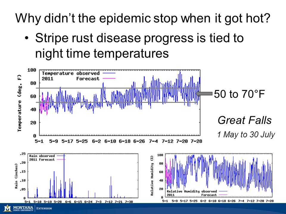 Why didn't the epidemic stop when it got hot.