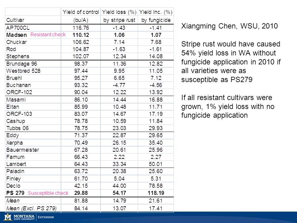 Xiangming Chen, WSU, 2010 Stripe rust would have caused 54% yield loss in WA without fungicide application in 2010 if all varieties were as susceptibl