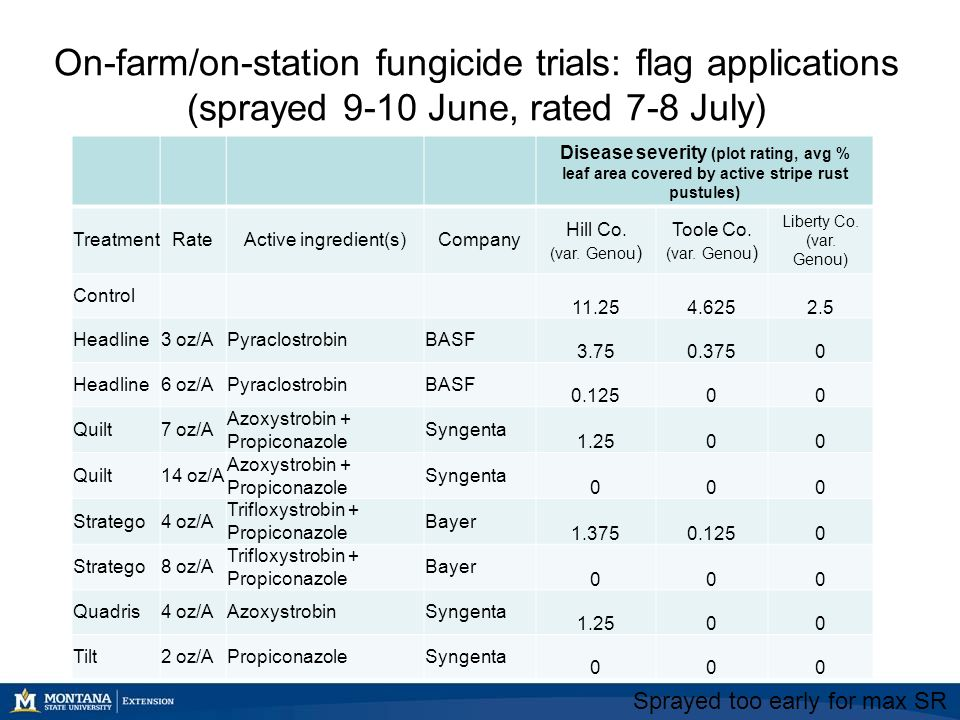 On-farm/on-station fungicide trials: flag applications (sprayed 9-10 June, rated 7-8 July) Disease severity (plot rating, avg % leaf area covered by active stripe rust pustules) TreatmentRateActive ingredient(s)Company Hill Co.
