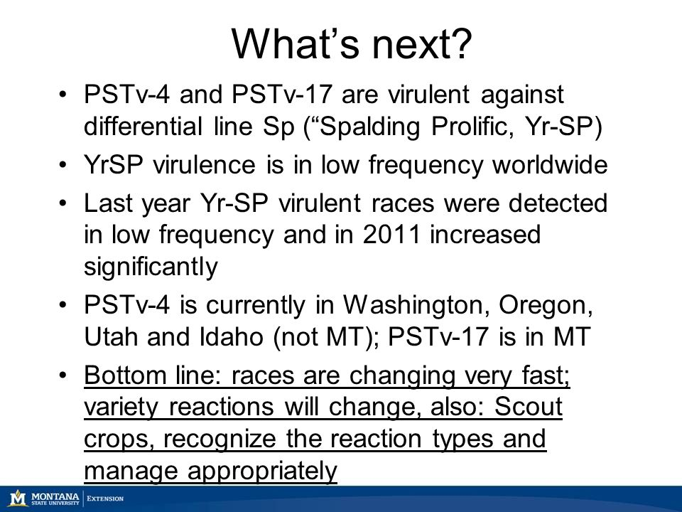 """What's next? PSTv-4 and PSTv-17 are virulent against differential line Sp (""""Spalding Prolific, Yr-SP) YrSP virulence is in low frequency worldwide Las"""