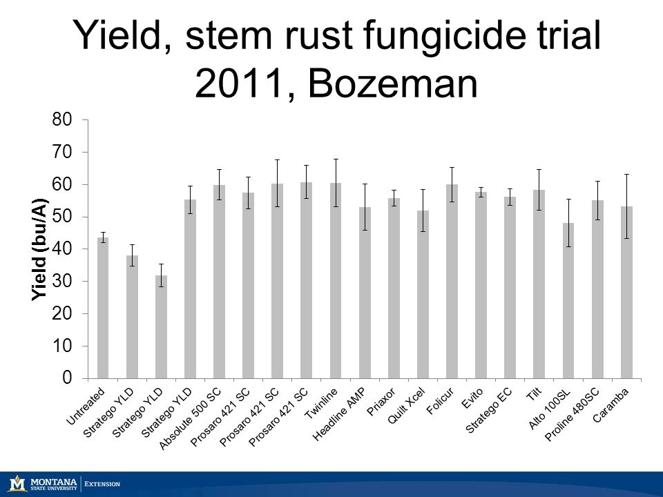 Yield, stem rust fungicide trial 2011, Bozeman