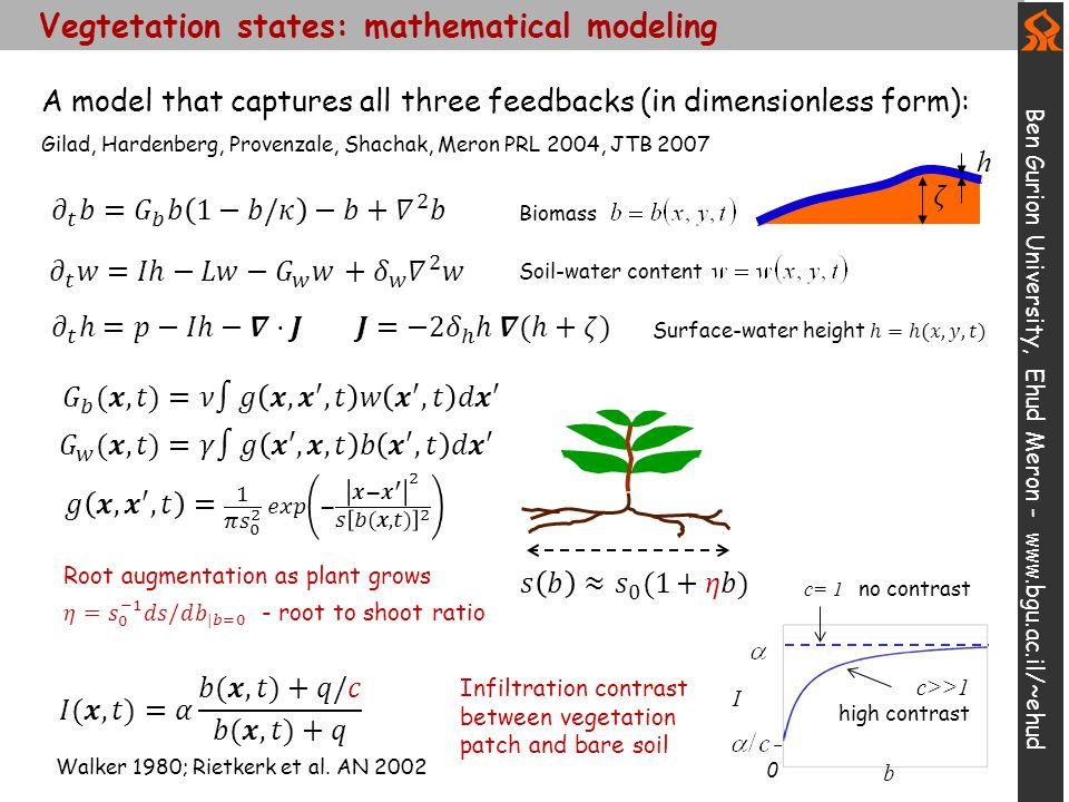 Vegtetation states: mathematical modeling Ben Gurion University, Ehud Meron - www.bgu.ac.il/~ehud h Soil-water content Biomass Infiltration contrast between vegetation patch and bare soil I 0 b c= 1 no contrast c>>1 high contrast Walker 1980; Rietkerk et al.