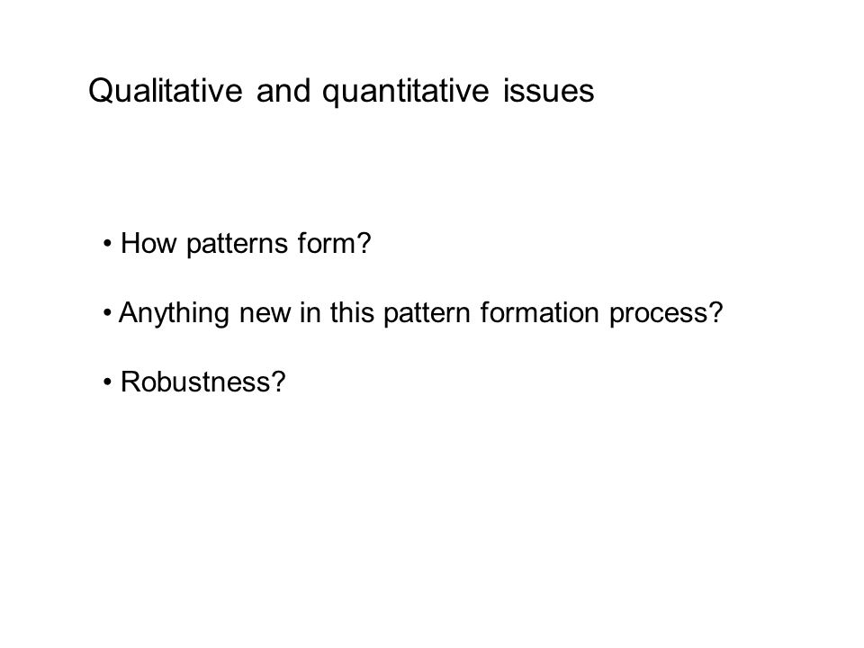 How patterns form? Anything new in this pattern formation process? Robustness? Qualitative and quantitative issues