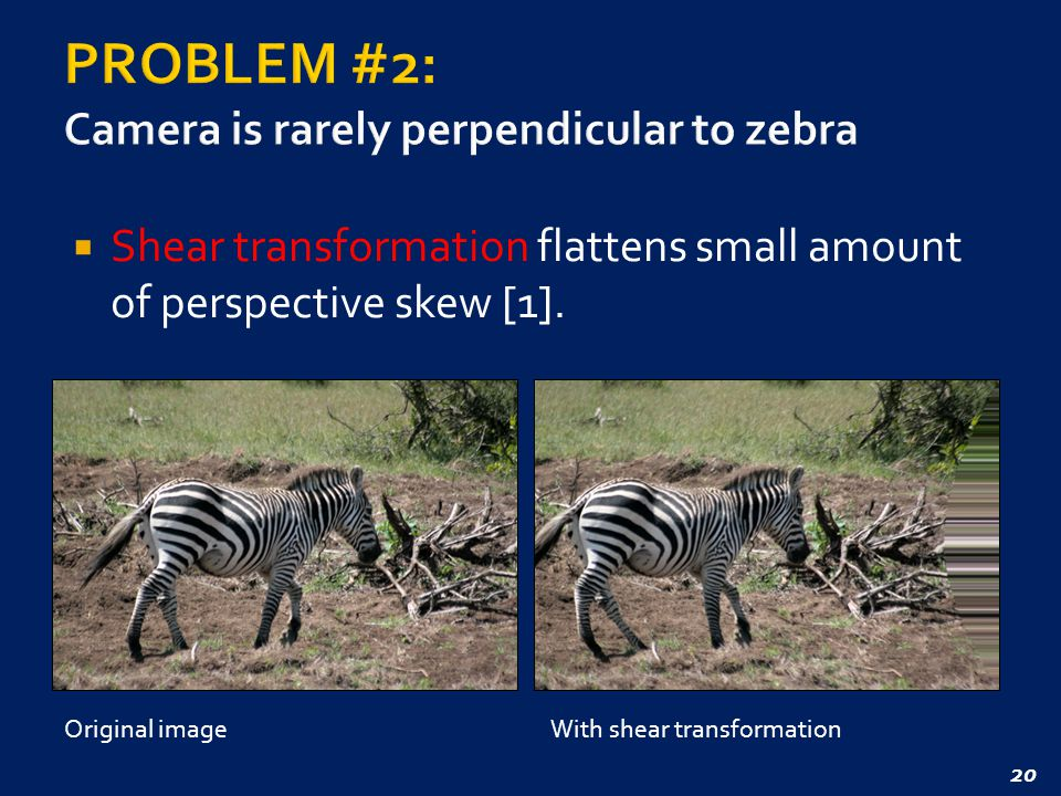 20  Shear transformation flattens small amount of perspective skew [1].