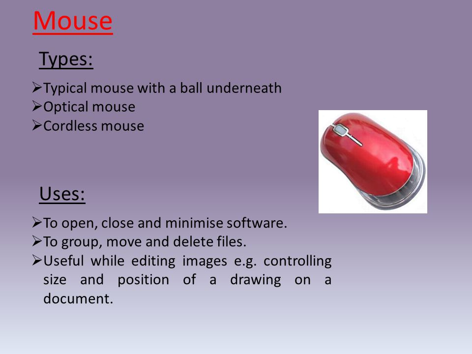 Mouse  To open, close and minimise software. To group, move and delete files.