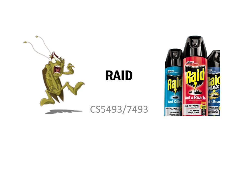 RAID CS5493/7493