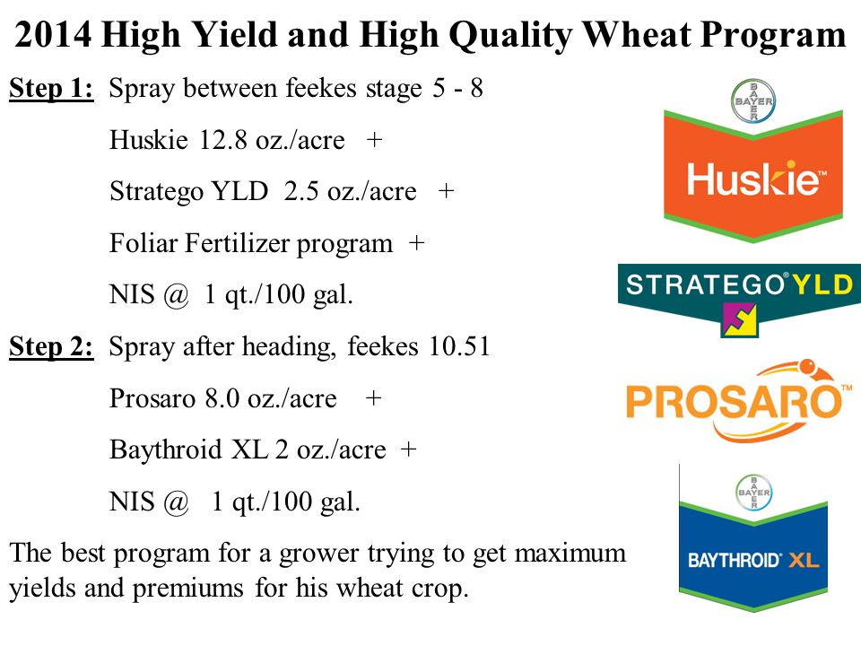Early Season Wheat Application for Disease Control and Plant Health: -- Apply between feekes 5 and 8 growth stages.