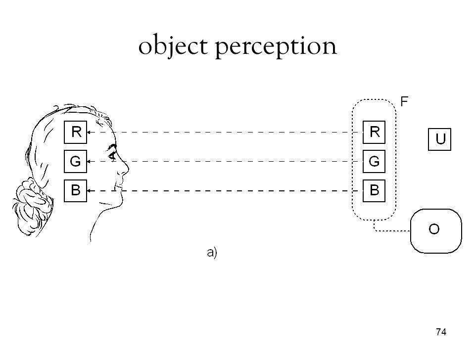 object perception 74