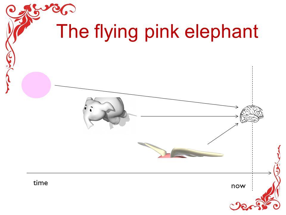 The flying pink elephant time now