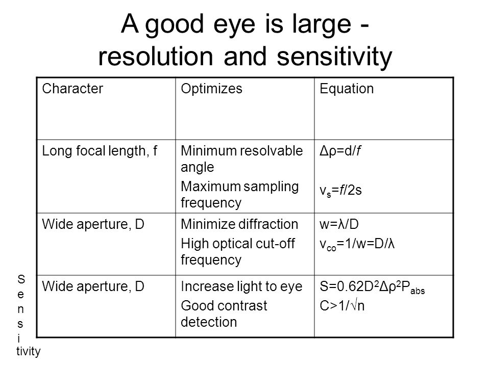 A good eye is large - resolution and sensitivity CharacterOptimizesEquation Long focal length, fMinimum resolvable angle Maximum sampling frequency Δρ