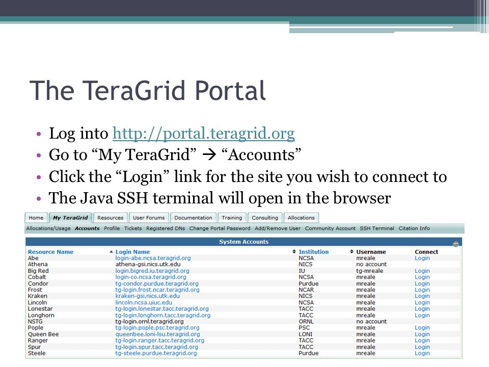 The TeraGrid Portal Log into http://portal.teragrid.orghttp://portal.teragrid.org Go to My TeraGrid  Accounts Click the Login link for the site you wish to connect to The Java SSH terminal will open in the browser