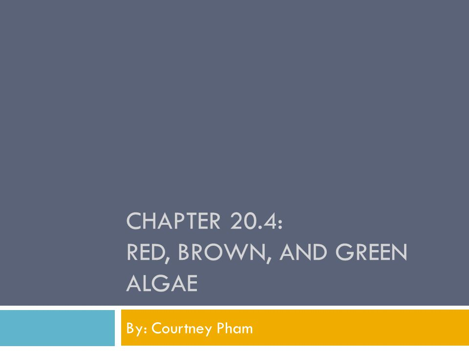 CHAPTER 20.4: RED, BROWN, AND GREEN ALGAE By: Courtney Pham