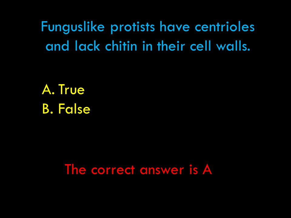 Funguslike protists have centrioles and lack chitin in their cell walls. A.True B.False The correct answer is A