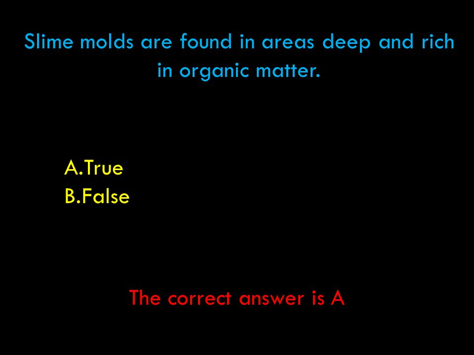 Slime molds are found in areas deep and rich in organic matter. A.True B.False The correct answer is A