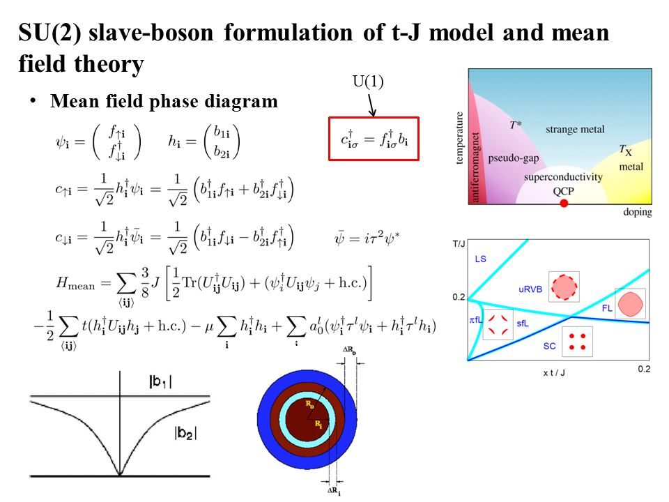SU(2) slave-boson formulation of t-J model and mean field theory Mean field phase diagram U(1)