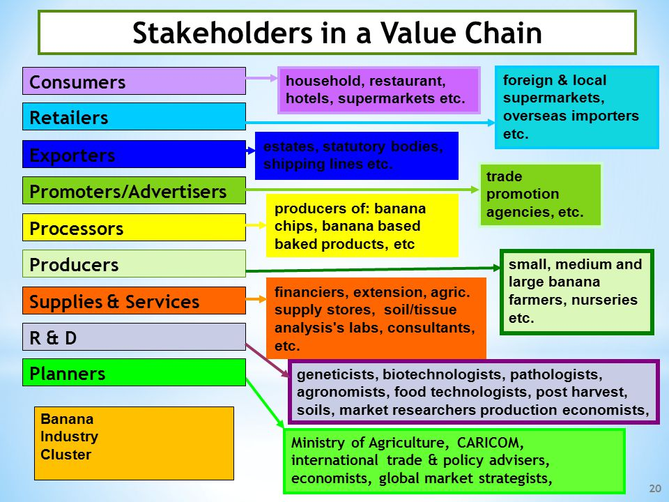 Input Supplies & Services Processors Producers Exporters Research & Development Retailers Promoters/advertisers Consumers Planners (Government & Private sector) Small Ruminants Cluster Poultry Industry Cluster Banana Industry Cluster Aquaculture Industry Cluster Pharmaceutical & Nutriceuticals Cluster A Unified & Organized Agribusiness Sector: The CABA Value Chain 19