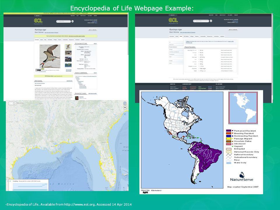 Encyclopedia of Life Webpage Example: -Encyclopedia of Life.