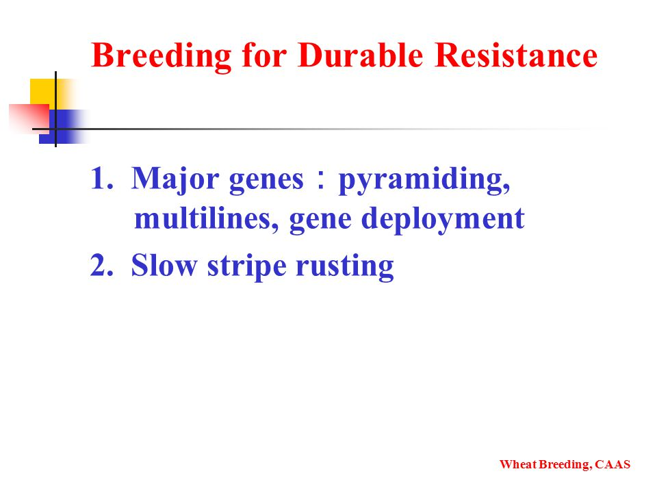 Breeding for Durable Resistance 1. Major genes : pyramiding, multilines, gene deployment 2.