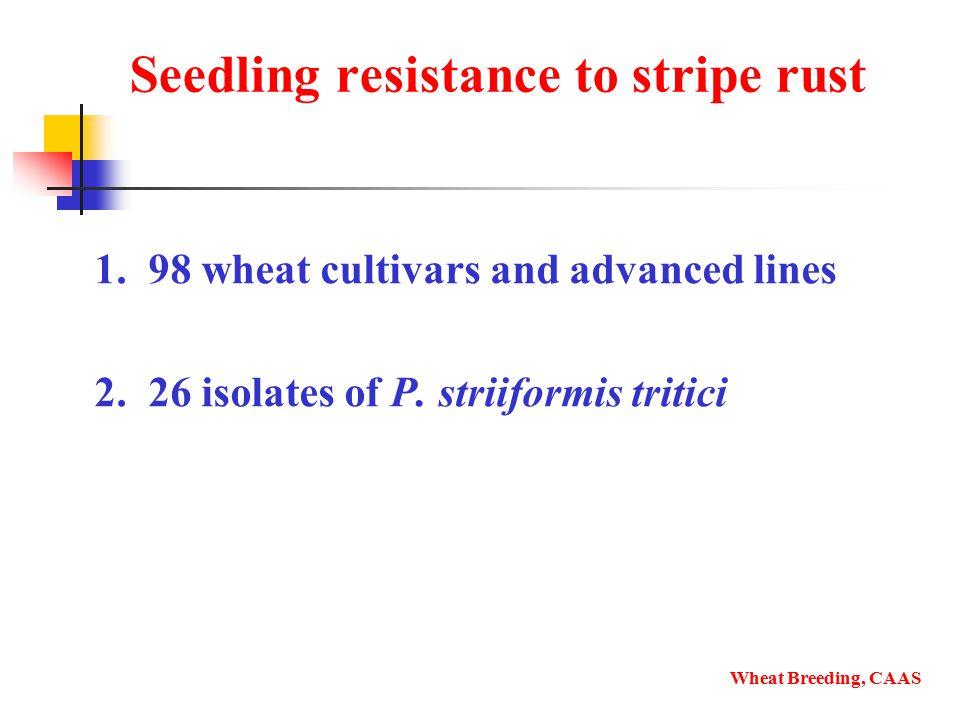 Seedling resistance to stripe rust 1. 98 wheat cultivars and advanced lines 2.