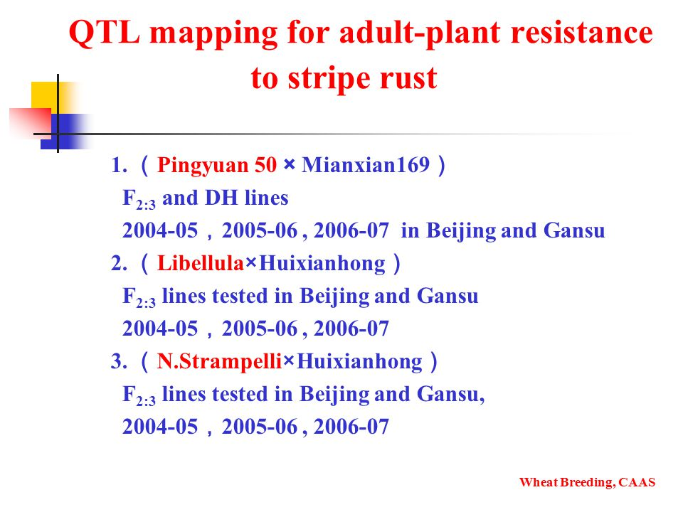 QTL mapping for adult-plant resistance to stripe rust 1.