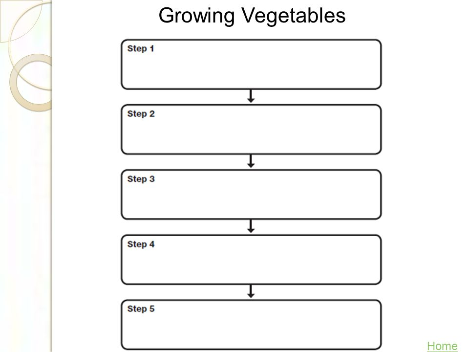 Build Background With your group brainstorm the steps in growing a vegetable garden.