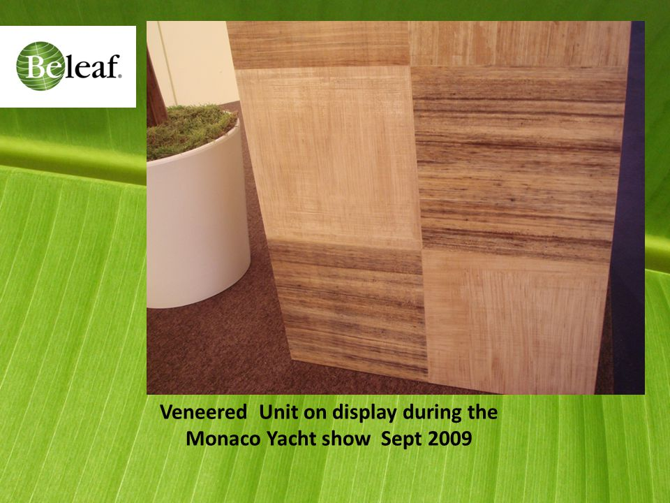 Veneered Unit on display during the Monaco Yacht show Sept 2009