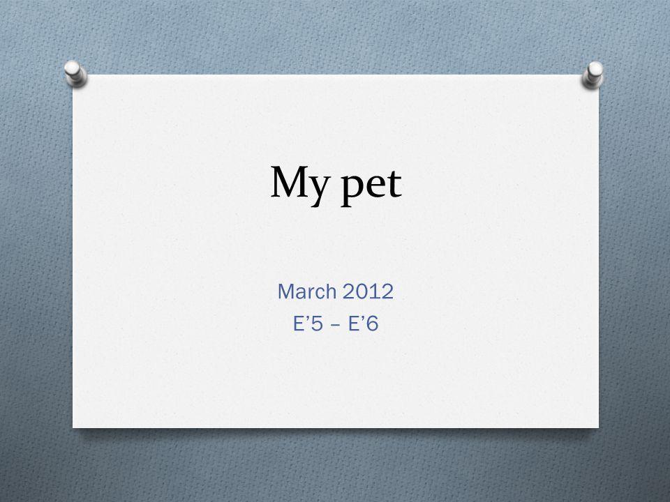 My pet March 2012 E'5 – E'6