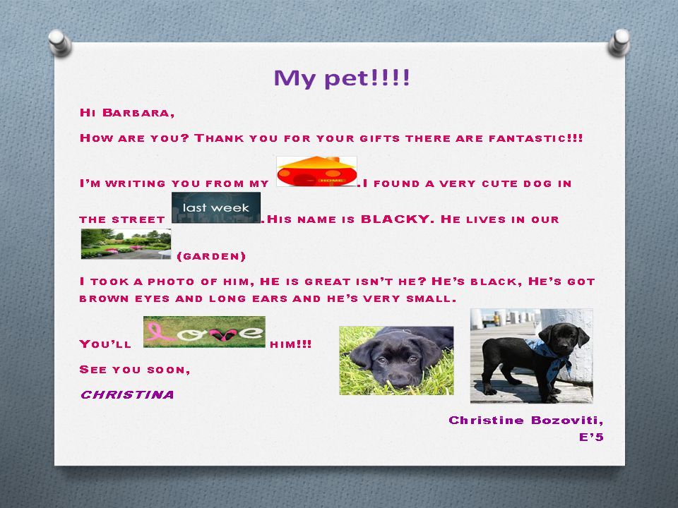My pet, by Nagia Xenou, E'5 Hi George, How are you.
