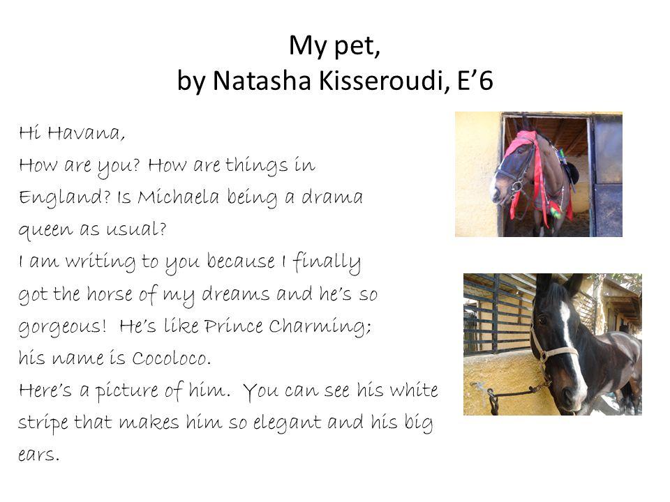 My pet, by Natasha Kisseroudi, E'6 Hi Havana, How are you.