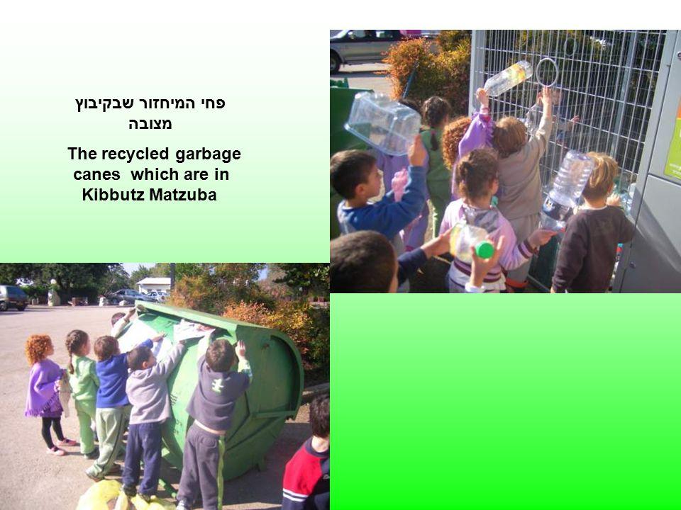 פחי המיחזור שבקיבוץ מצובה The recycled garbage canes which are in Kibbutz Matzuba