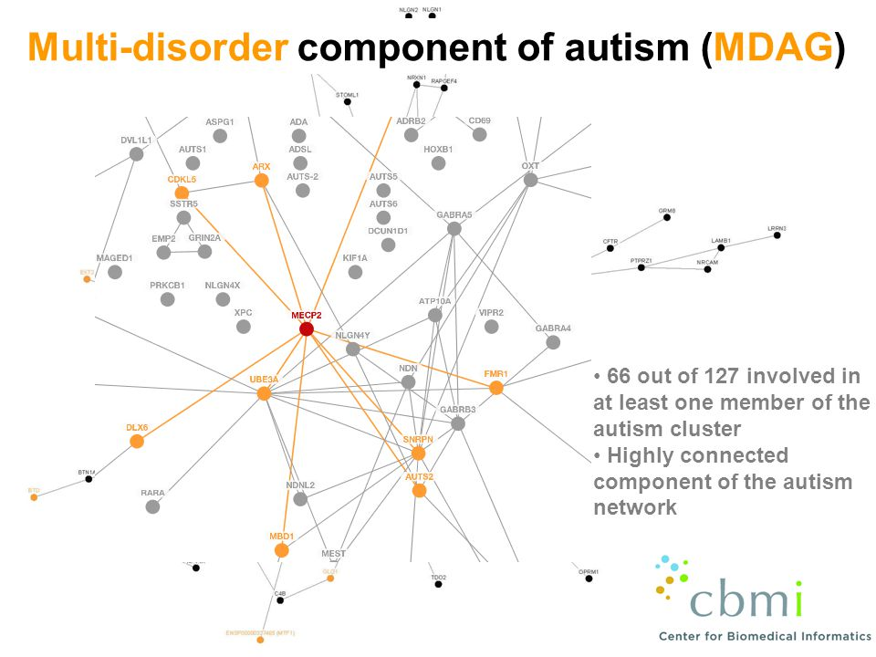 Multi-disorder component of autism (MDAG) 66 out of 127 involved in at least one member of the autism cluster Highly connected component of the autism network
