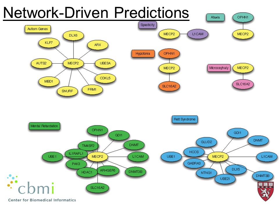 Network-Driven Predictions