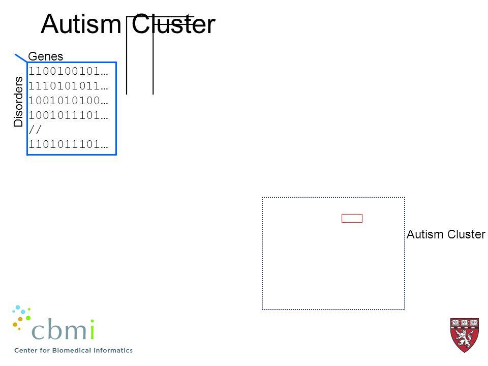 Autism Cluster 1100100101… 1110101011… 1001010100… 1001011101… // 1101011101… Genes Disorders Autism Cluster