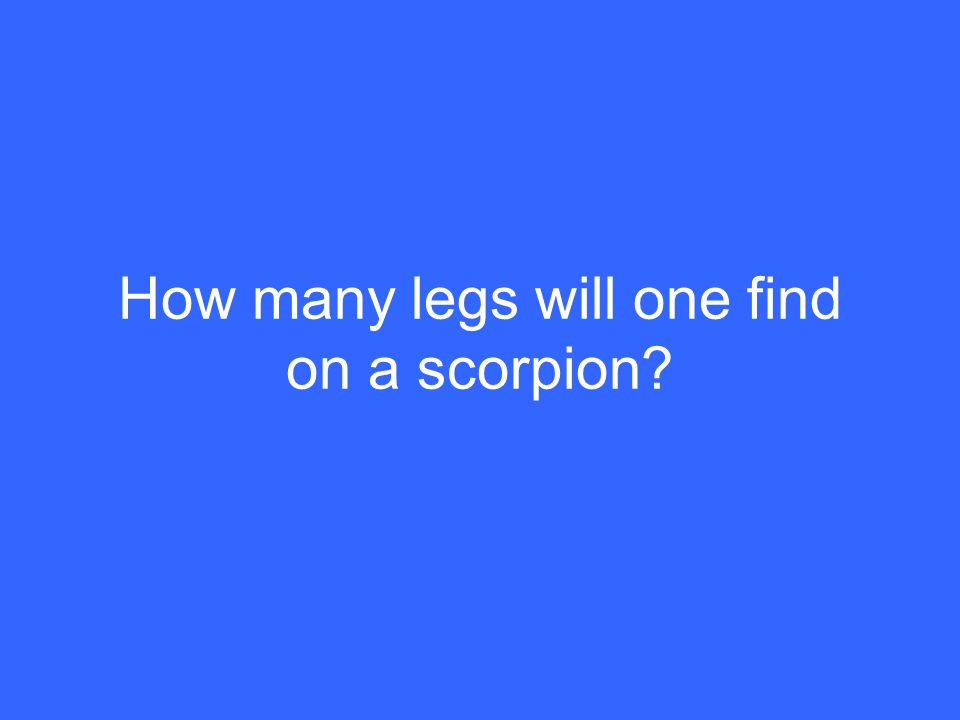 How many legs will one find on a scorpion?