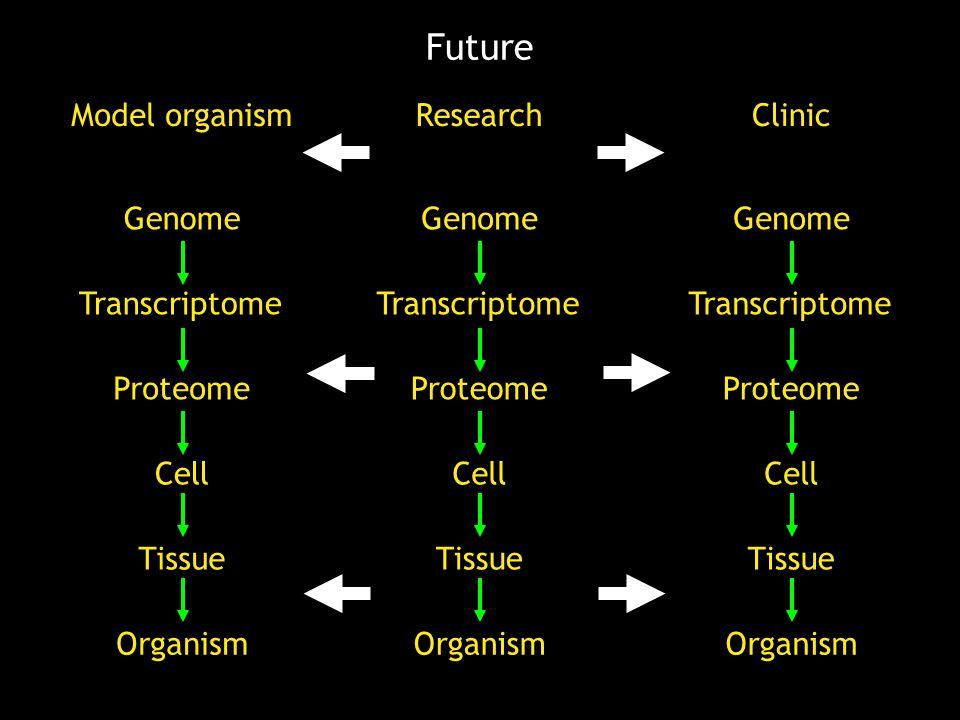 Genome Transcriptome Proteome Cell Tissue Organism Genome Transcriptome Proteome Cell Tissue Organism Model organism Genome Transcriptome Proteome Cell Tissue Organism Clinic Research Future
