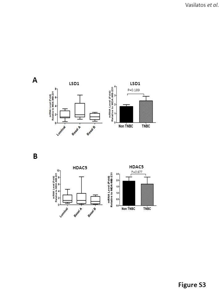 A LSD1 HDAC5 P=0.189 LSD1 P=0.677 HDAC5 B Figure S3 Vasilatos et al.