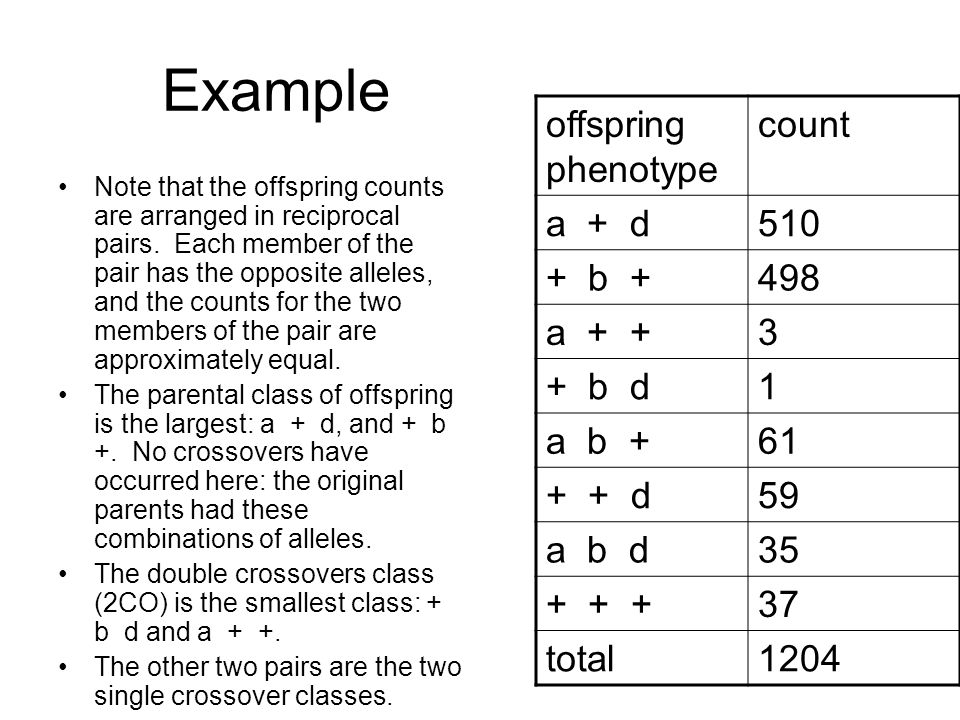 Example Note that the offspring counts are arranged in reciprocal pairs.