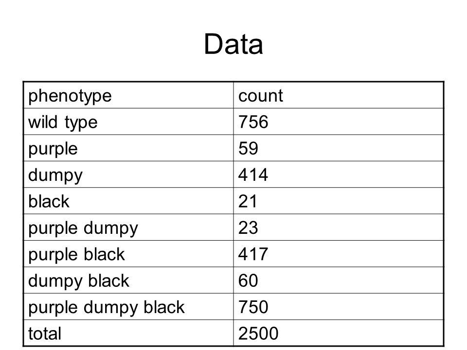 Data phenotypecount wild type756 purple59 dumpy414 black21 purple dumpy23 purple black417 dumpy black60 purple dumpy black750 total2500