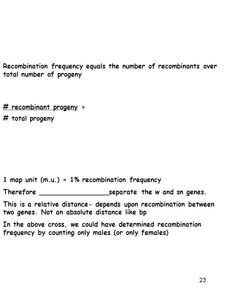 23 Recombination frequency equals the number of recombinants over total number of progeny # recombinant progeny = # total progeny 1 map unit (m.u.) =