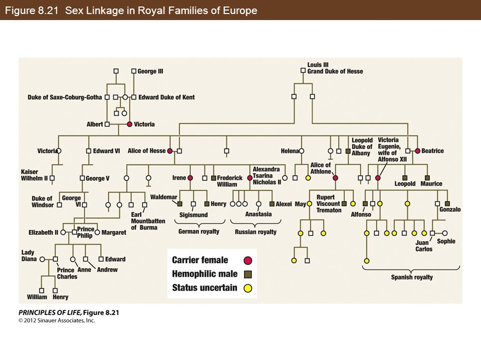 Figure 8.21 Sex Linkage in Royal Families of Europe