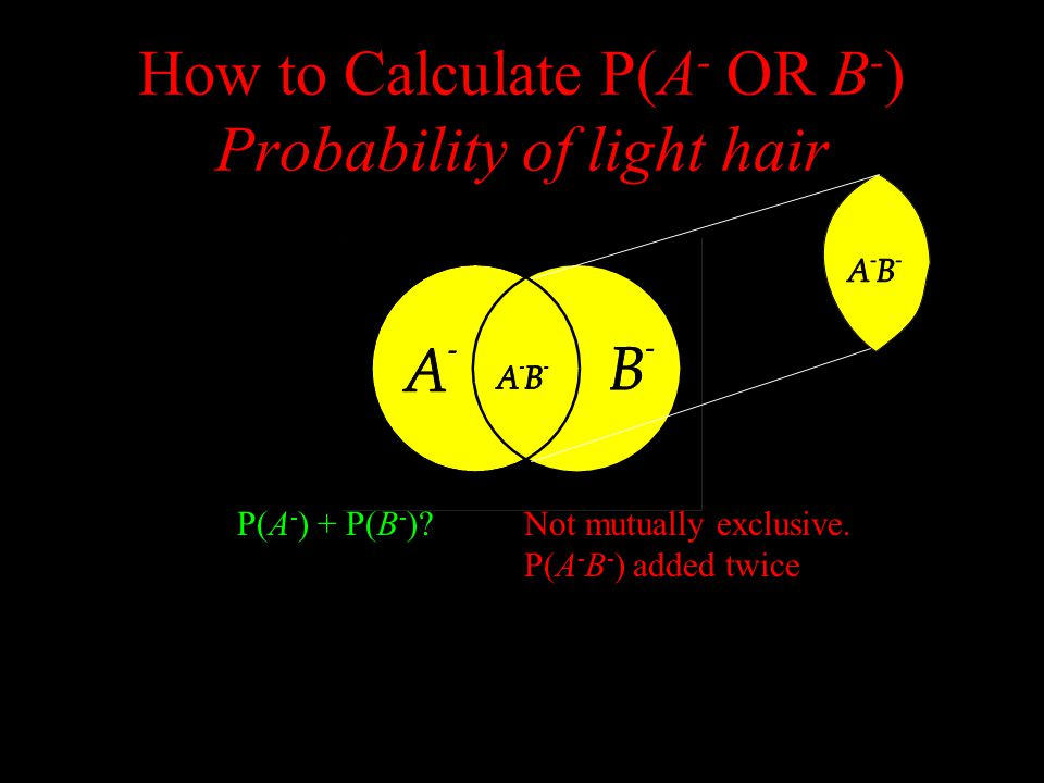 How to Calculate P(A - OR B - ) Probability of light hair P(A - )P(B - ) P(A - ) + P(B - ) Not mutually exclusive.