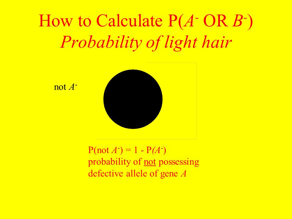 How to Calculate P(A - OR B - ) Probability of light hair P(not A - ) = 1 - P(A - ) probability of not possessing defective allele of gene A not A -