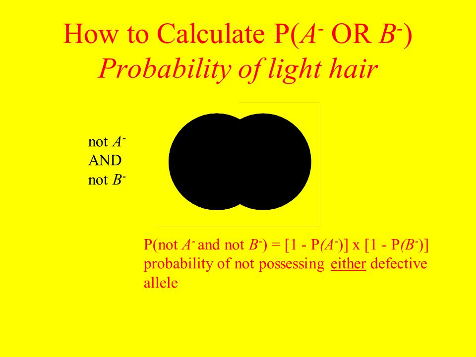 How to Calculate P(A - OR B - ) Probability of light hair P(not A - and not B - ) = [1 - P(A - )] x [1 - P(B - )] probability of not possessing either defective allele not A - AND not B -