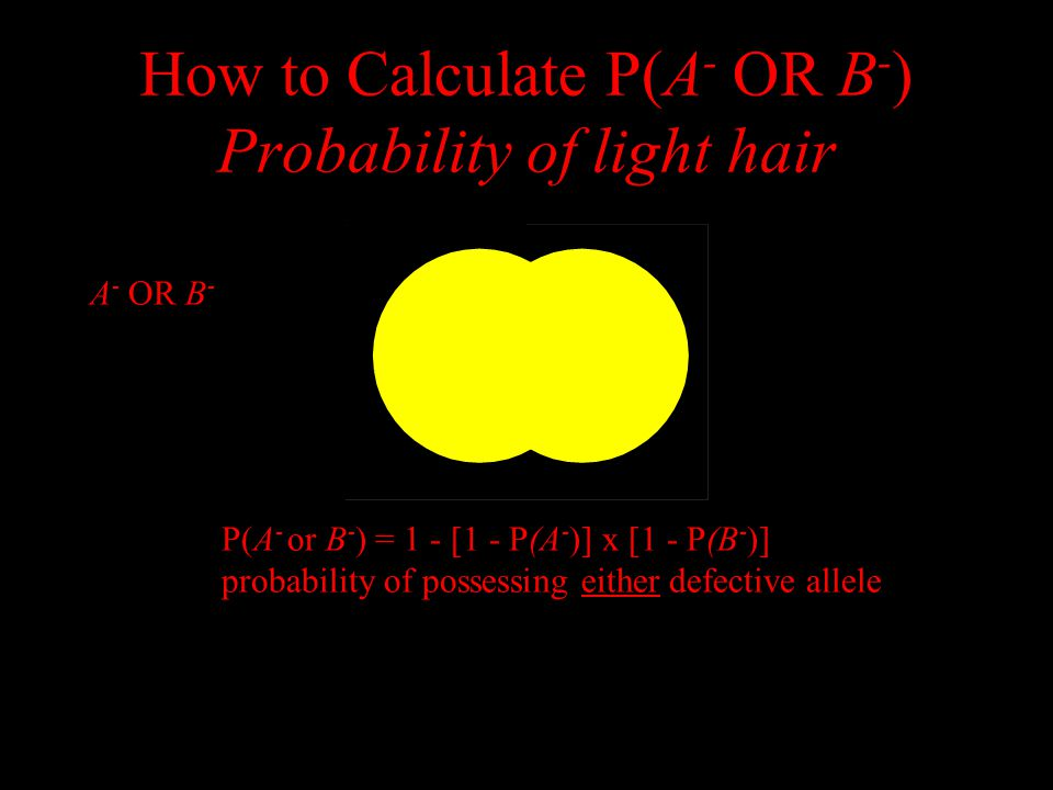 How to Calculate P(A - OR B - ) Probability of light hair P(A - or B - ) = 1 - [1 - P(A - )] x [1 - P(B - )] probability of possessing either defective allele not A - AND not B - A - OR B -