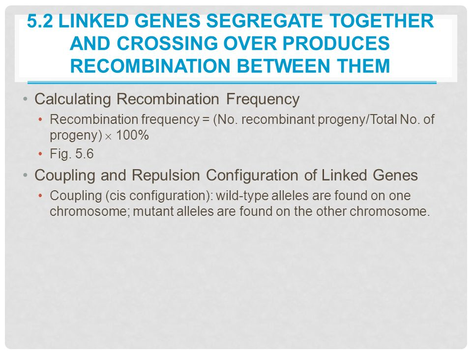 5.2 LINKED GENES SEGREGATE TOGETHER AND CROSSING OVER PRODUCES RECOMBINATION BETWEEN THEM Calculating Recombination Frequency Recombination frequency = (No.