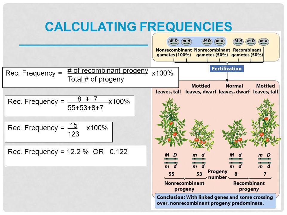 Rec.Frequency = x100% Rec.
