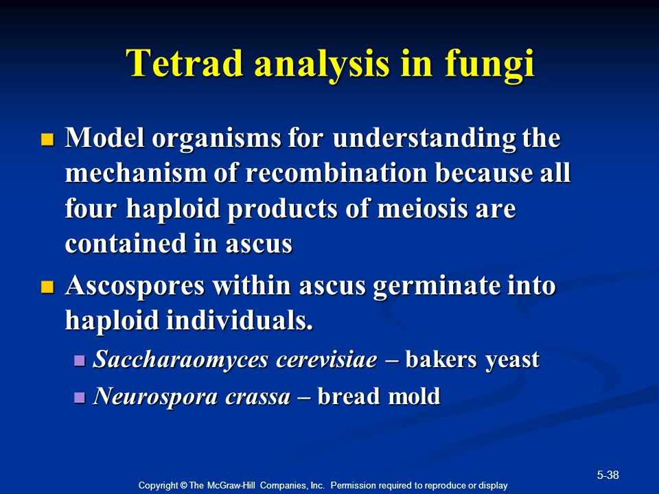 5-38 Copyright © The McGraw-Hill Companies, Inc. Permission required to reproduce or display Tetrad analysis in fungi Model organisms for understandin