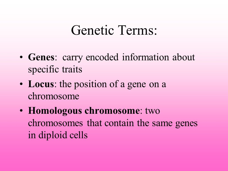 Observable Patterns of Inheritance What you are is a result of genetic expression How Simple Traits Are Passed to the Next Generation