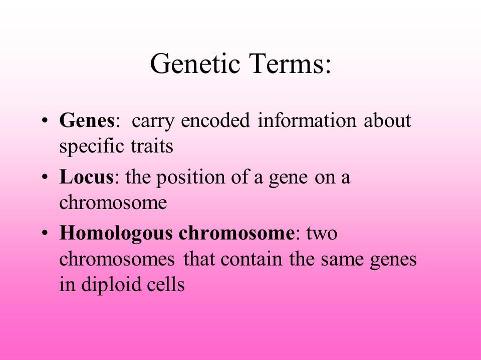 Genetic testing before birth